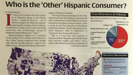 Who is the 'Other' Hispanic Consumer?